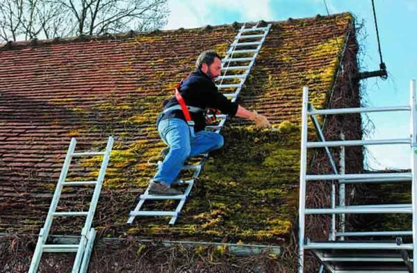 prix moyen nettoyage toiture hydrofuge