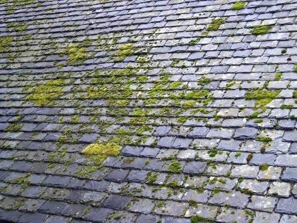 entreprise de nettoyage toiture hydrofuge ardoise