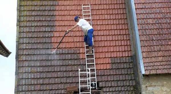 prix demoussage et peinture toiture