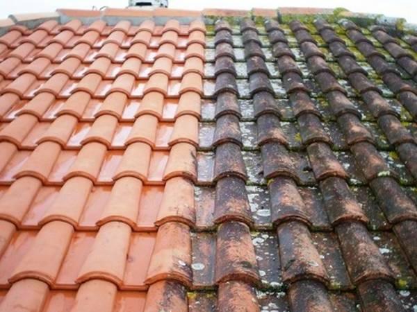prix d'un demoussage de toiture au m2