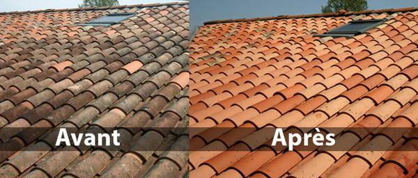 prix traitement anti mousse toiture